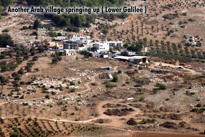 Another Arab village springing up ( Lower Galilee )