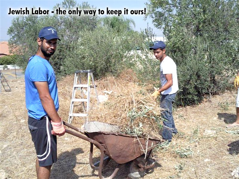 Jewish Labor the only way to keep it ours!
