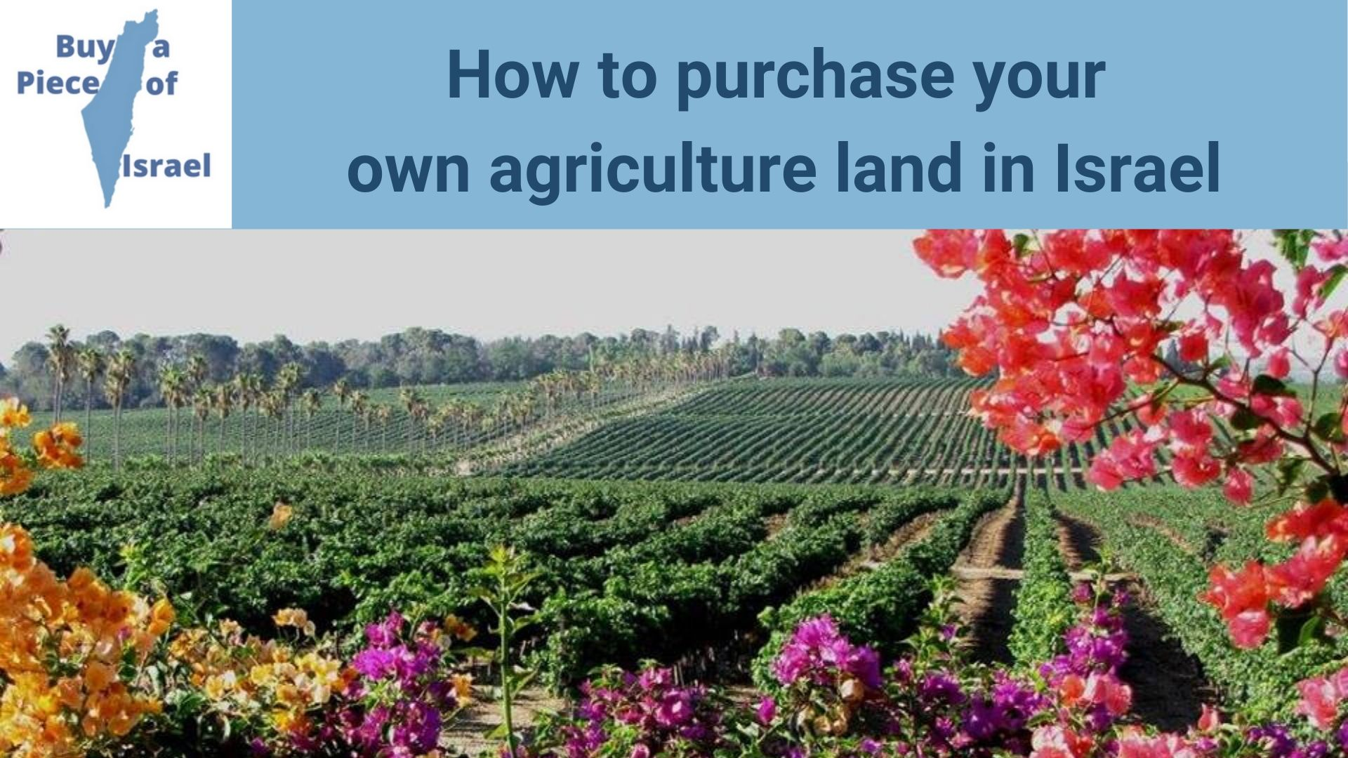 How to purchase your own land in Israel