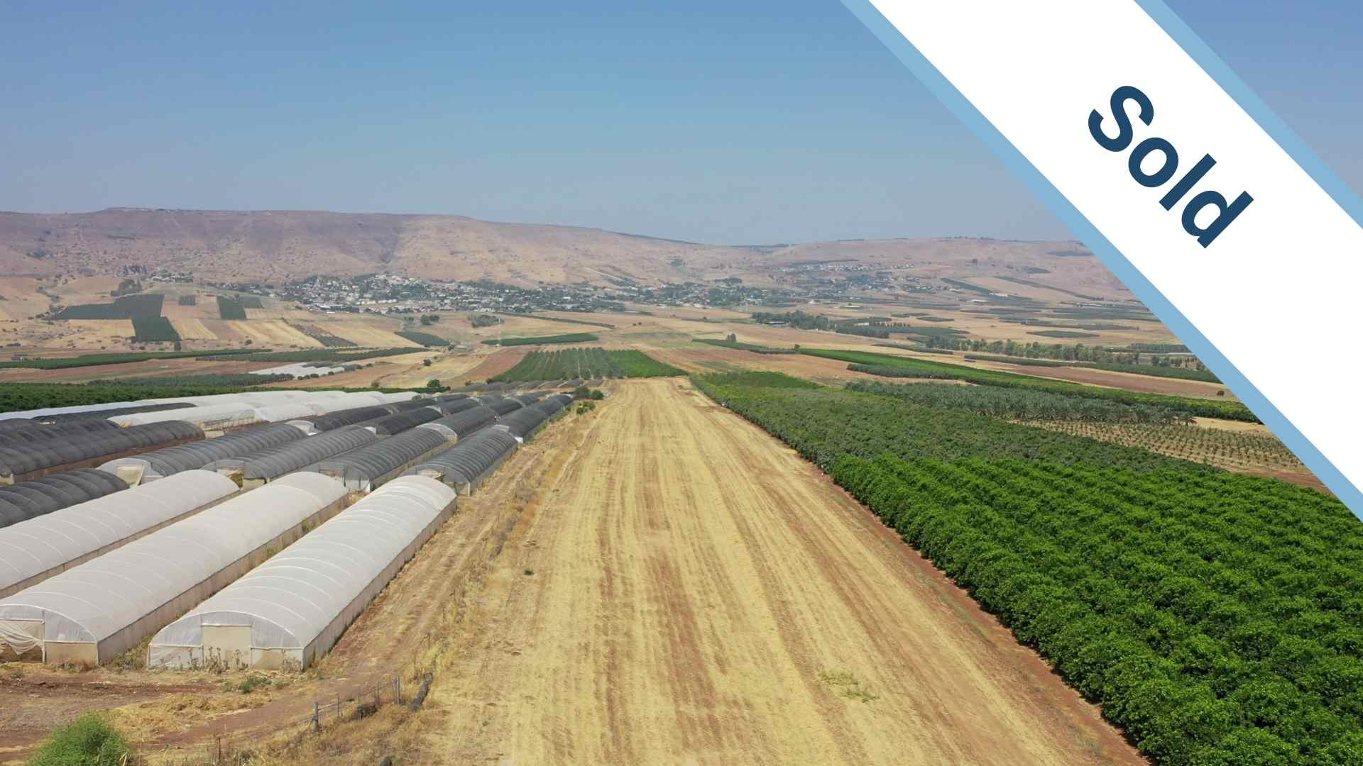 Agricultural land for sale in Israel